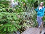Harmonica bambou 90 x 180 cm_