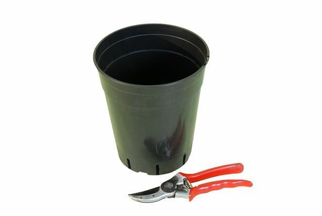 Pot rond profond pour palmier 4.0 litres