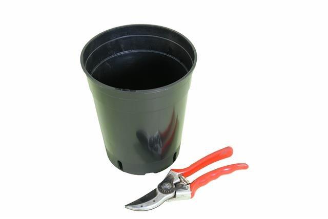 Pot rond profond pour palmier 3.0 litres