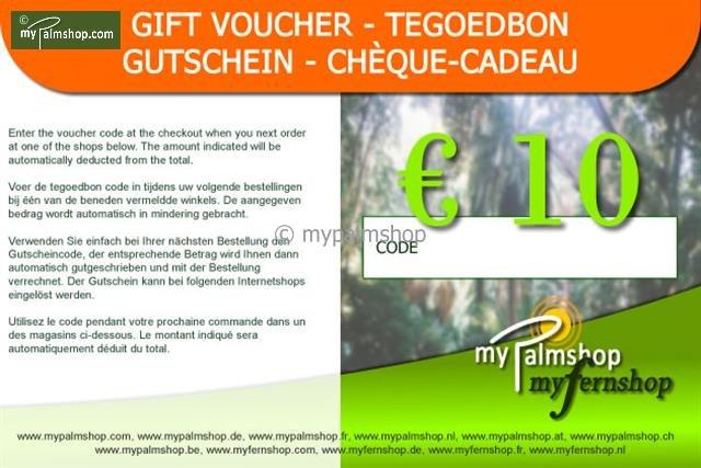 Cheque-Cadeau €10,-