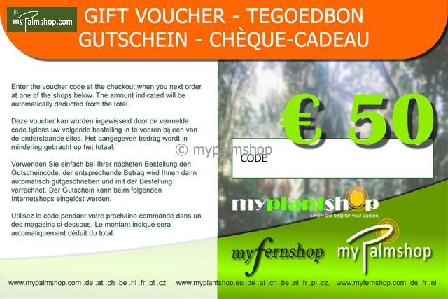 Cheque-Cadeau €50,-