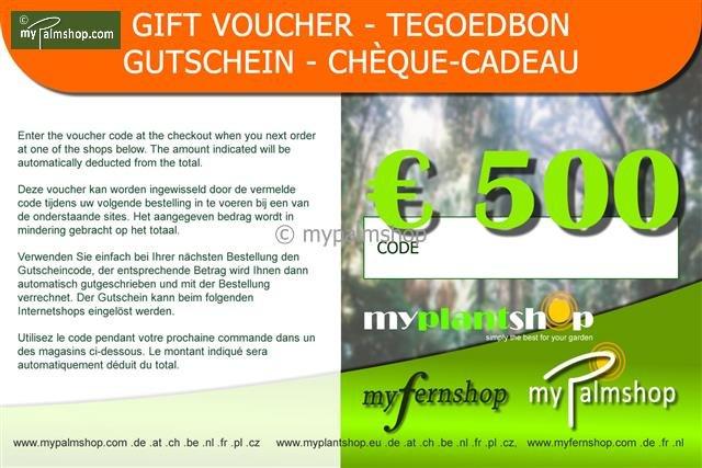 Cheque-Cadeau €500,-