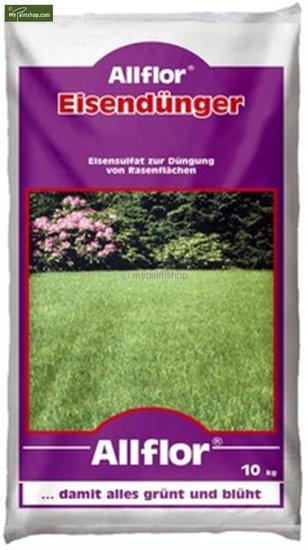 Allflor Engrais ferrique 10 Kg Sac