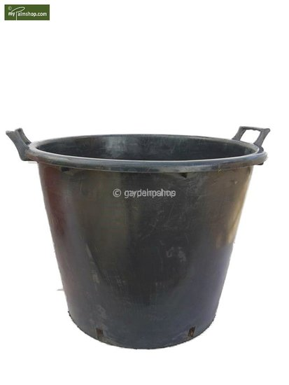 Pots taille XXL pour palmiers Ø 65 cm 90 ltr. [palette]