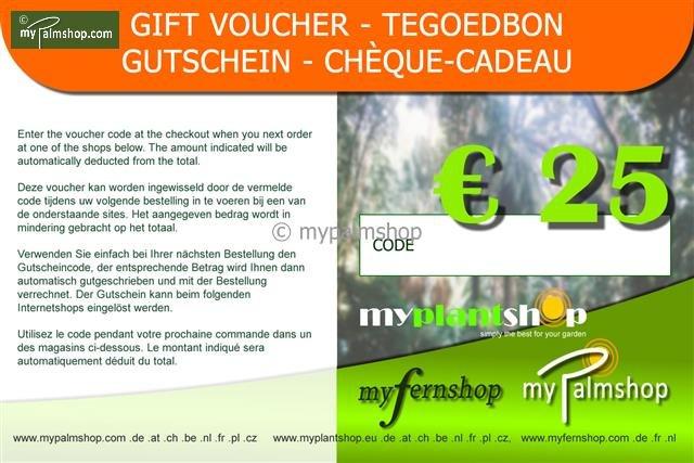 Cheque-Cadeau €25,-