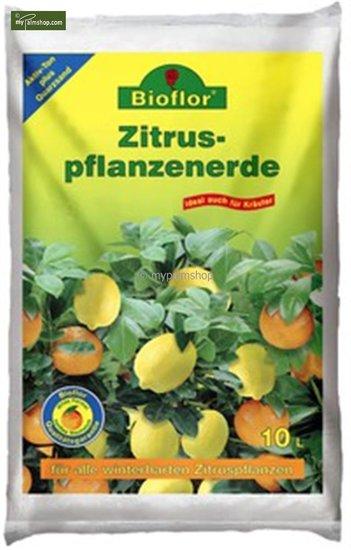 Terreau Premium pour Citrus - 10 ltr
