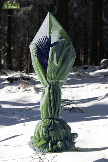 Protection hivernale pour plantes pyramide hauteur 300 cm