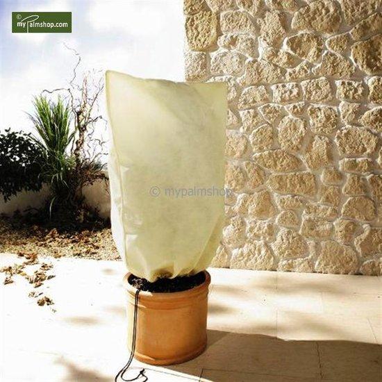 Protection hivernale pour plantes square 180 x 120 cm XXL