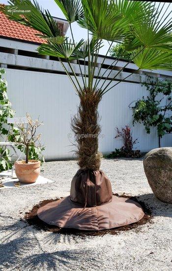 Protection des racines Ø 100 cm